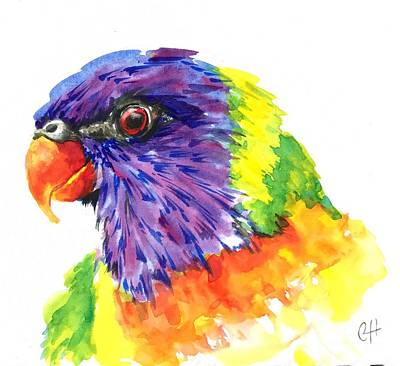 Painting - Rainbow Lorikeet by Chris Hobel
