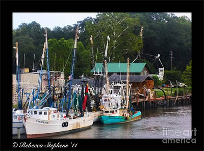 Oyster Photograph - Rainbow Marina by Rebecca Stephens