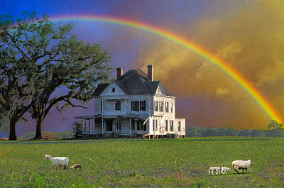 Photograph - Rainbow Meadow by Jan Amiss Photography