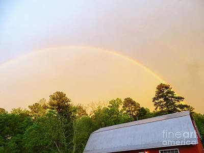 Photograph - Rainbow by Melissa Messick
