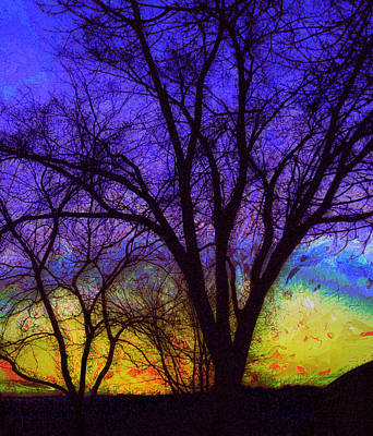 Photograph - Rainbow Morning by Julie Lueders