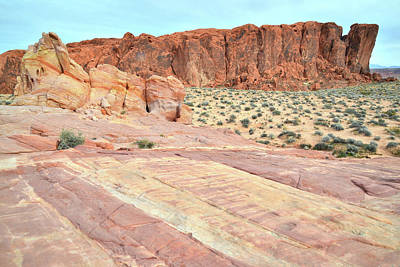 Print featuring the photograph Rainbow Of Color In Valley Of Fire by Ray Mathis