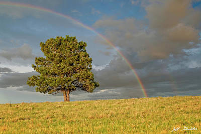 Photograph - Rainbow Over A Lone Tree by Jeff Goulden