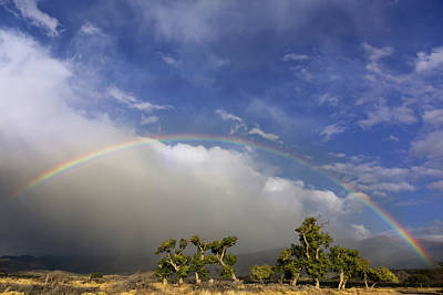 Photograph - Rainbow Over New Mexico by Kathleen Bishop