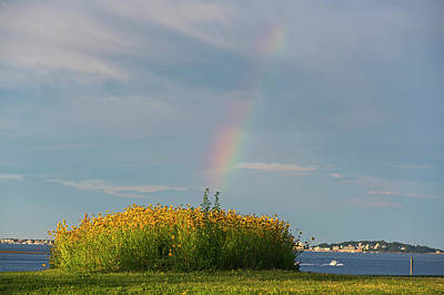 Photograph - Rainbow Over Nut Island In Quincy Ma Flower Patch by Toby McGuire