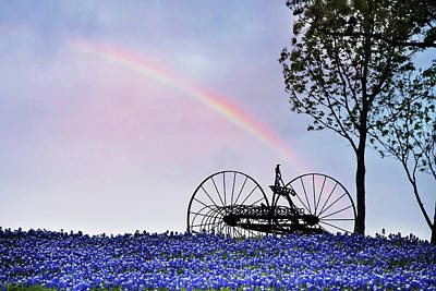 Photograph - Rainbow Over Texas Bluebonnets by David and Carol Kelly