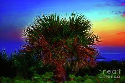 Photograph - Rainbow Palm by Patti Whitten