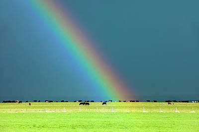 Photograph - Rainbow Pasture by Todd Klassy