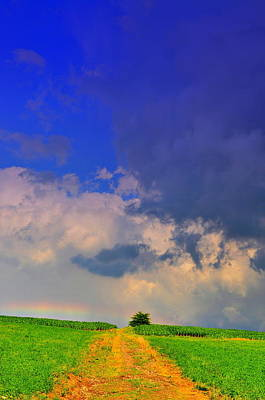 Clouds Photograph - Rainbow Path by Emily Stauring