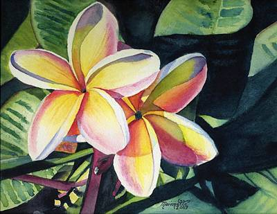 Flower Wall Art - Painting - Rainbow Plumeria by Marionette Taboniar
