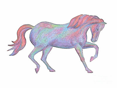 Drawing - Rainbow Pony II by Elizabeth Lock