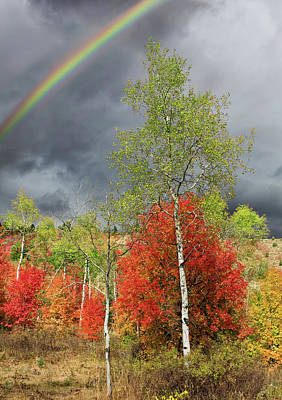 Photograph - Rainbow Ridge by Kathleen Bishop
