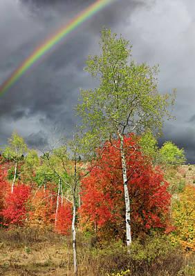 Photograph - Rainbow Ridge by Kathleen Bishop