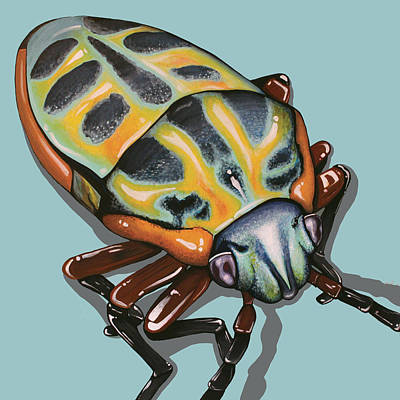 Painting - Rainbow Shield Beetle by Jude Labuszewski