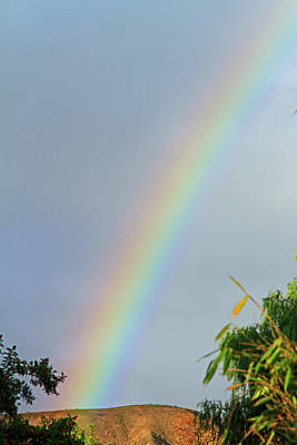 Photograph - Rainbow by Shoal Hollingsworth
