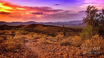 Photograph - Rainbow Skies by Anthony Citro