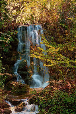 Art Print featuring the photograph Rainbow Springs Waterfall by Louis Ferreira