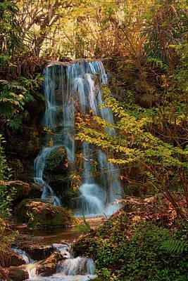 Rainbow Springs Waterfall Art Print by Louis Ferreira