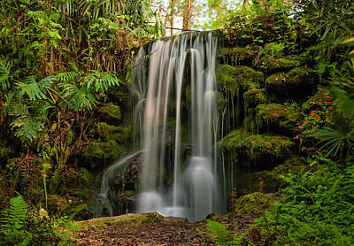 Photograph - Rainbow Springs Waterfall by Robin Blaylock