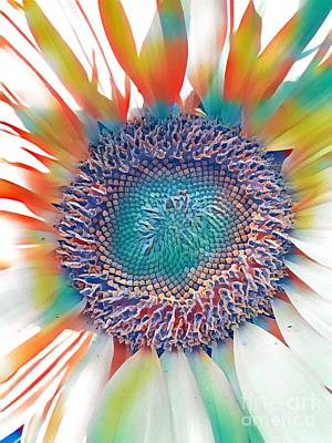 Photograph - Rainbow Sunflower  by Susan Carella