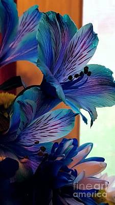 Photograph - Rainbow Tiger Eye by Marlene Williams