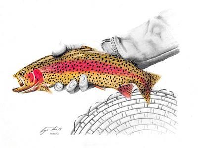 Rainbow Trout Original by Benjamin Meier