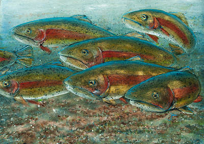 Fishermen Painting - Rainbow Trout Fish Run by Jani Freimann