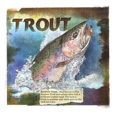 Drawing - Rainbow Trout by John Dyess