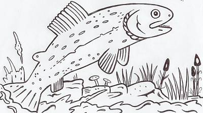 Trout Stream Drawing - Rainbow Trout by Lester Noss