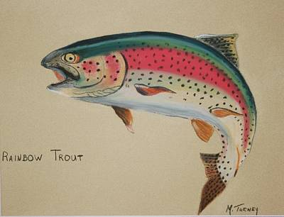 Pastel - Rainbow Trout by Michele Turney
