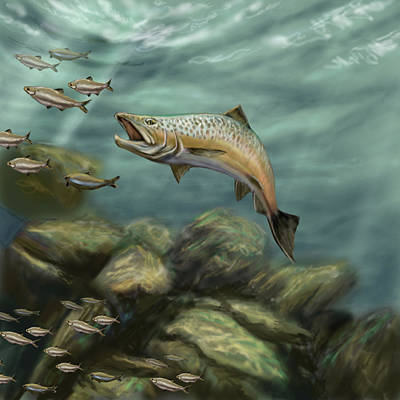 Digital Art - Rainbow Trout by Peggy Novak