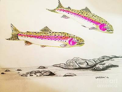 Rainbow Trout Scene - Original Gel Pen Original by Scott D Van Osdol