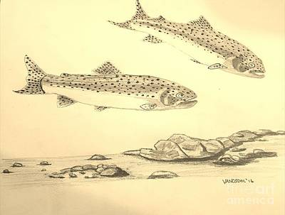 Rainbow Trout Scene - Sepia Original by Scott D Van Osdol