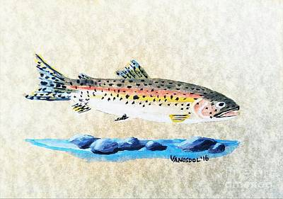 Painted Details Drawing - Rainbow Trout Watercolor Painting by Scott D Van Osdol