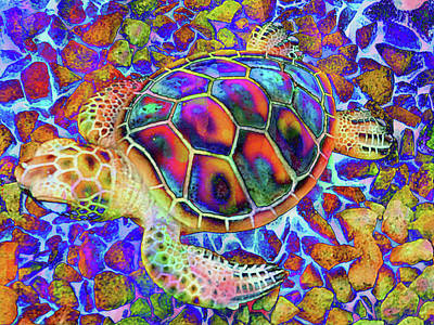 Photograph - Rainbow Turtle by Dorothy Berry-Lound