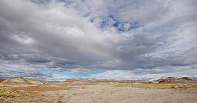 Photograph - Rainbow Vista In The Painted Desert by Leda Robertson