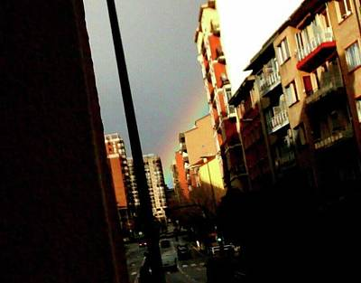 Photograph - Rainbow Wink by Nieve Andrea