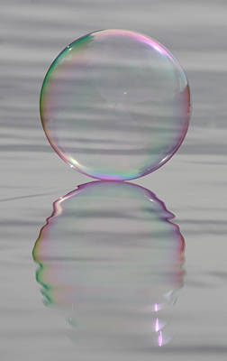 Photograph - Rainbows Edge Bubble by Cathie Douglas