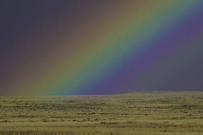 Rainbows End Art Print by Elizabeth Eldridge