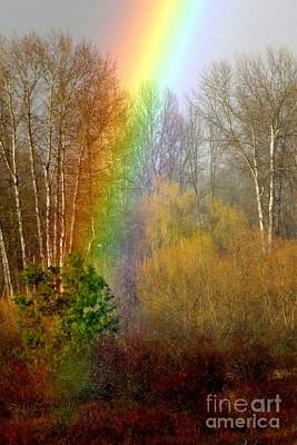 Photograph - Rainbow's End by Frank Townsley