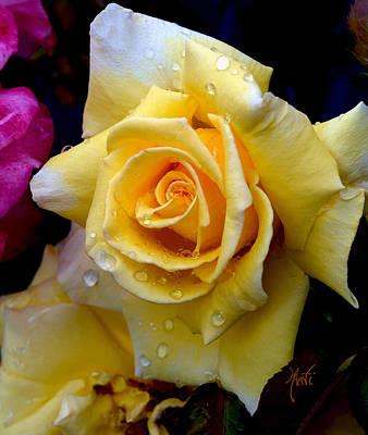 Photograph - Raindrop Yellow Rose by Michele Avanti