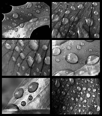 Raindrops Art Print by Jaroslaw Grudzinski