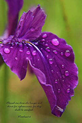 Tyra Photograph - Raindrops by Tyra  OBryant