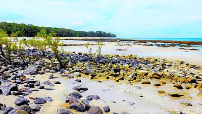 Photograph - Rainforest  Beach - Cape Tribulation - Far North Queensland, Australia by Lexa Harpell