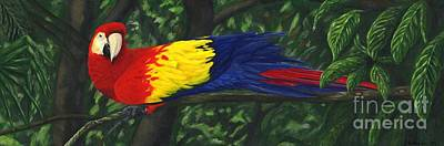 Scarlet Macaw Painting - Rainforest Parrot by JoAnn Wheeler