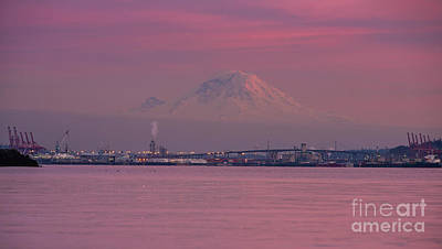 Royalty-Free and Rights-Managed Images - Rainier Dusk Reflection by Mike Reid
