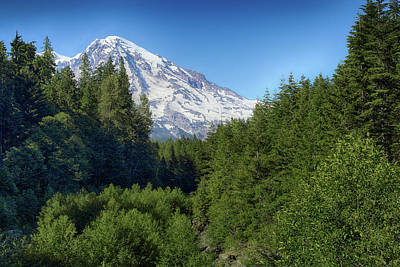 Photograph - Rainier In Summer by Marie Leslie
