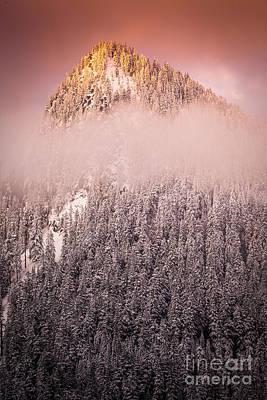 Rainier Winter Scene Art Print by Inge Johnsson