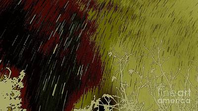 Photograph - Raining Stars  by Angela J Wright