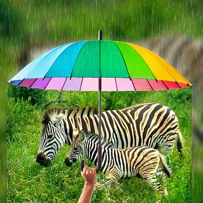 Digital Art - Raining Zebras by Vijay Sharon Govender